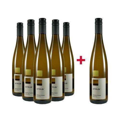 Weingut Strub 1710 Strub 1710 2019 5+1 Aktion Riesling Nierstein trocken