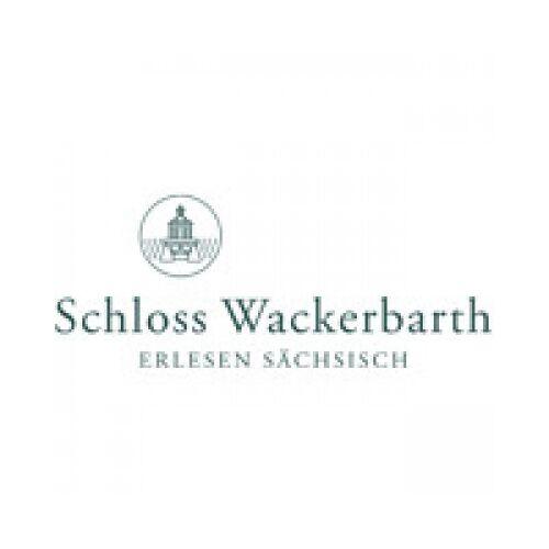 Sächsisches Staatsweingut Schloss Wackerbarth 2019 Riesling Wackerbarthberg trocken