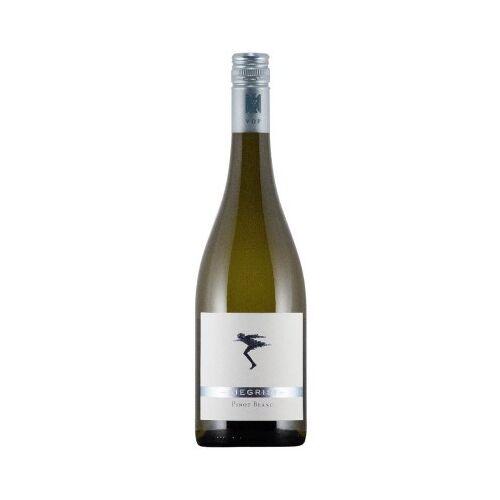 Weingut Siegrist Siegrist 2019 Pinot Blanc VDP.Gutswein trocken