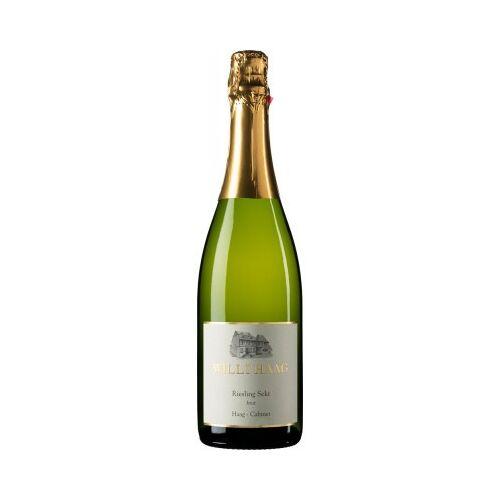 Weingut Willi Haag Willi Haag 2018 Willi Haag Sekt brut -Klassische Flaschengärung