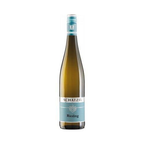 Weingut Schätzel Schätzel 2019 Riesling VDP.Gutswein trocken