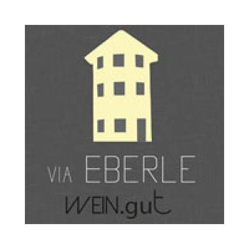 Wein.gut Via Eberle Eberle 2018 Spätburgunder Blanc der Noir Eiswein 0,375L