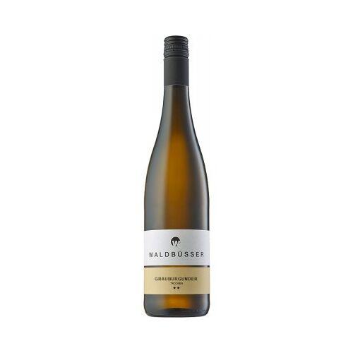 Weingut Waldbüsser Waldbüsser 2019 Grauburgunder trocken