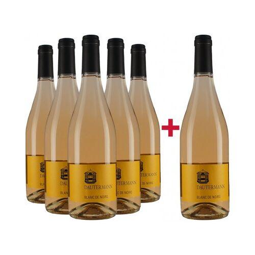 Weingut Dautermann Dautermann 2019 Blanc de Noir Gutswein-Paket