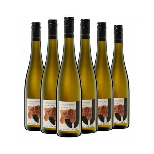Weingut Julius Julius 2019 Sauvignon Blanc Paket BIO