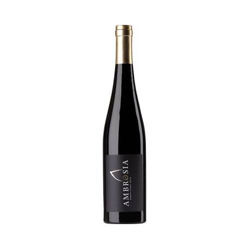 Aloisiushof Alois Kiefer 2015 Pinot Noir trocken
