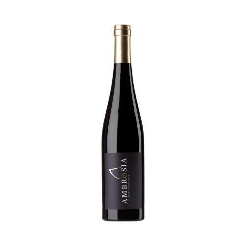 Aloisiushof Alois Kiefer 2016 Pinot Noir Kirchberg trocken