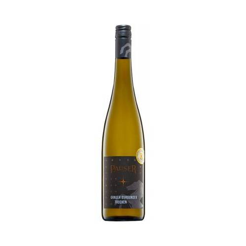 Weingut Pauser Pauser 2019 Flonheimer Geisterberg Grauer Burgunder Lagenwein trocken