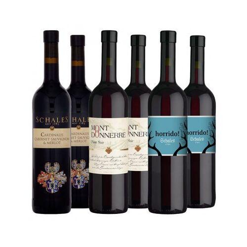 Weingut Schales Schales  Rotwein Paket