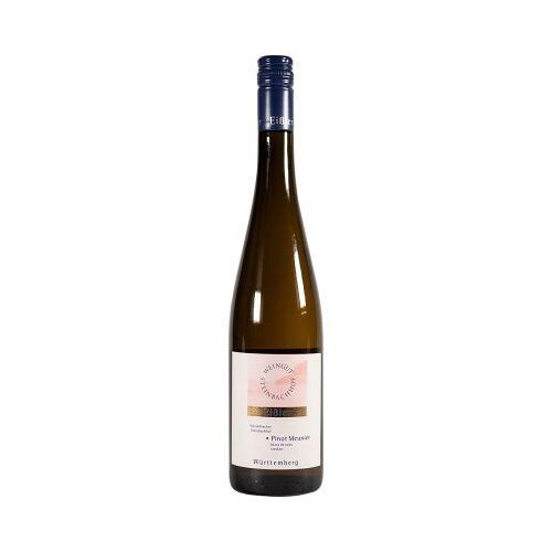 Weingut Steinbachhof Steinbachhof 2019 * Pinot Meunier blanc de noirs blanc de noirs trocken Gündelbacher Steinbachhof