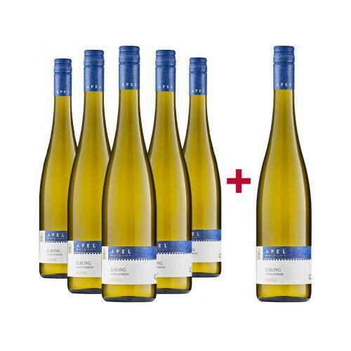 Weingut Apel Apel 2020 5+1 Elbling Spargelpaket