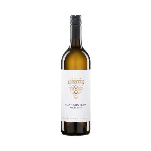 Weingut Gebrüder Nittnaus Gebrüder Nittnaus 2019 Sauvignon Blanc Obere Wies trocken