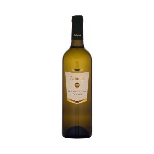 Weingut Schales Schales 2019 SCHALES Sauvignon Blanc trocken