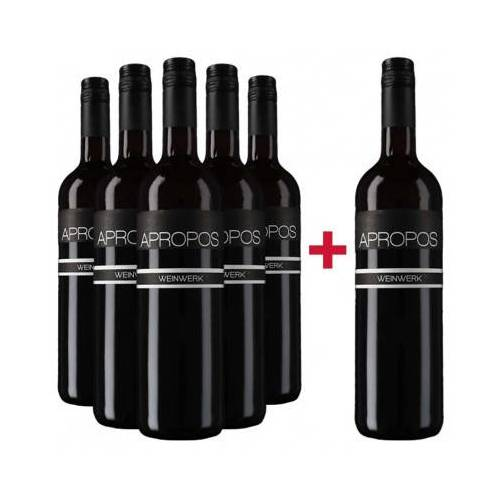 Weingut Weinwerk Weinwerk 2015 5+1 2015 Apropos Cuvée Rot trocken