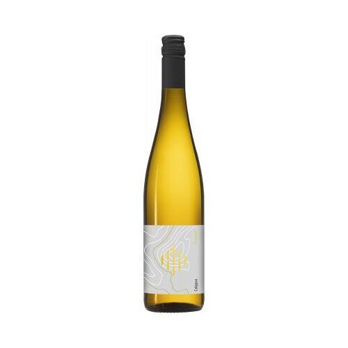 Weingut Forsthof Forsthof 2020 Calypso lieblich