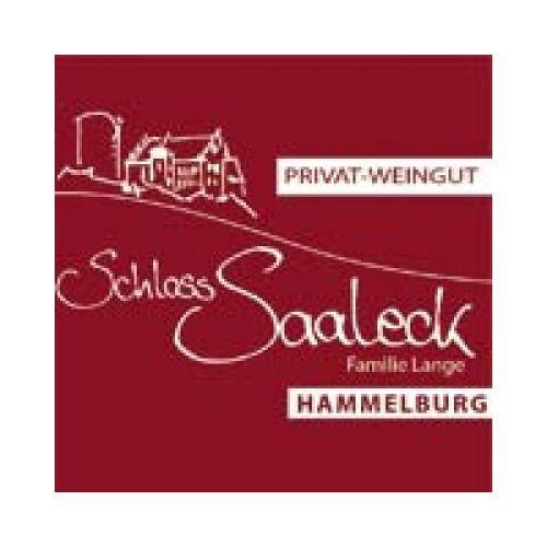Weingut Schloss Saaleck Schloss Saaleck  Schlossglühwein ROT süß