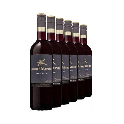 Affentaler Winzer 2019 Monkey Mountain Rotwein trocken (6 Flaschen)