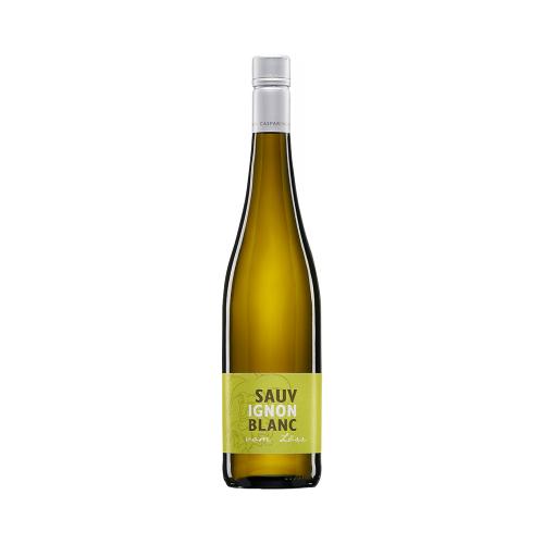 Weingut Caspari-Kappel Caspari-Kappel 2020 Sauvignon Blanc trocken