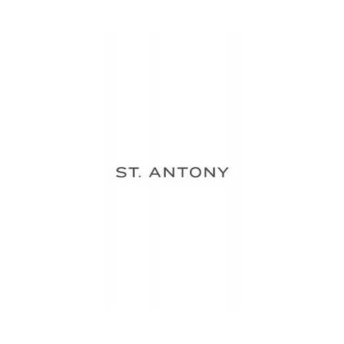 Weingut St. Antony St. Antony 2016 Madame Brut Rosé