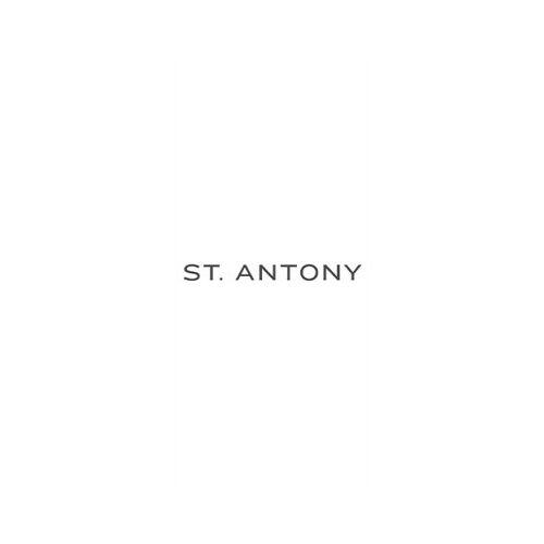 Weingut St. Antony St. Antony 2016 Madame Rosé brut