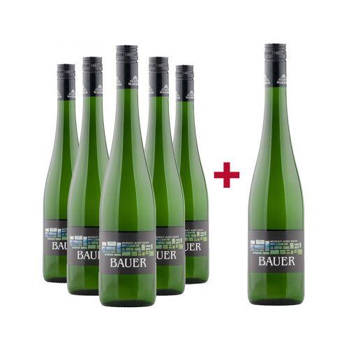 Weingut Josef Bauer Josef Bauer  5+1 Wagramer Veltliner und Riesling Entdeckerpaket