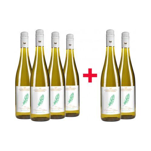 Weinmanufaktur Gengenbach 2020 4+2 En Primeur Weißwein-Paket