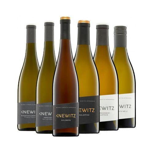 Weingut Knewitz Knewitz  Knewitz Kennenlern-Paket