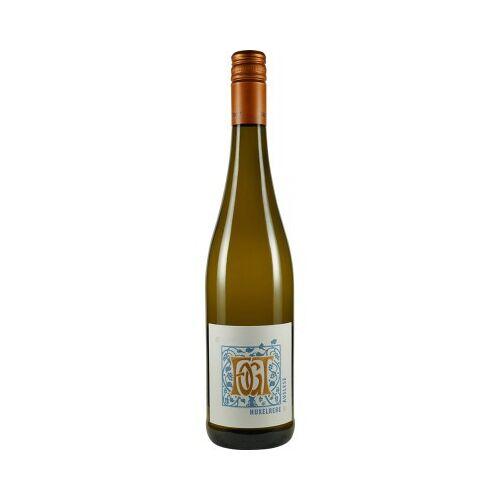 Weingut Fogt Fogt 2019 Huxelrebe Auslese edelsüß