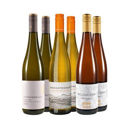 """WirWinzer Select 2017 """"Weißweine für die Sommertage"""" Paket"""