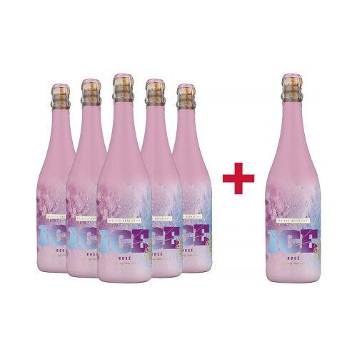 Weingut Schloss Affaltrach Schloss Affaltrach  5+1 ICE Sekt Rosé Paket