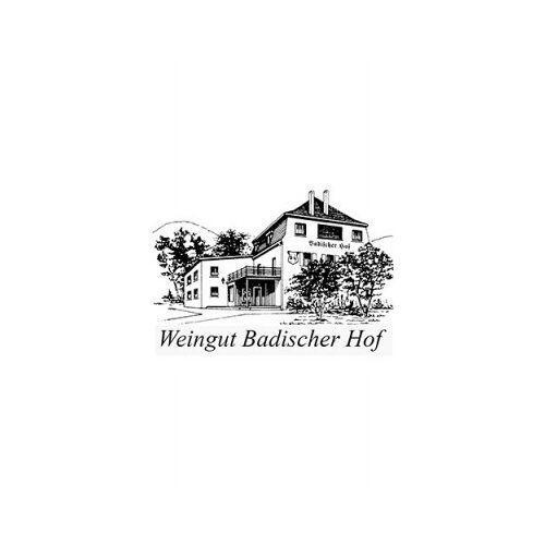 Weingut Badischer Hof Badischer Hof 2016 Regent Edition S