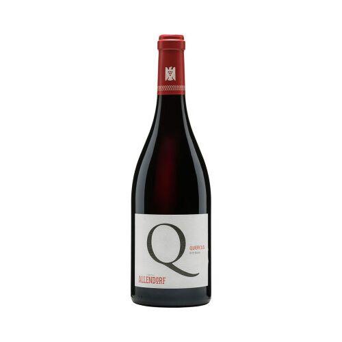 Weingut Allendorf Allendorf 2016 Quercus Pinot Noir VDP.Gutswein trocken