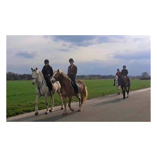 Jennys Ponyhof 90 oder 120 Minuten Pferde-Tour für 2 Personen in einer Kleingruppe auf Jennys Ponyhof (bis zu 45% sparen*)
