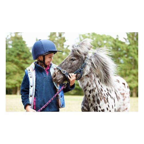 Jennys Ponyhof 60 Min. Ponyführen und Eis für 1 oder 2 Kinder schon ab 2 Jahren auf Jennys Ponyhof (bis zu 43% sparen*)