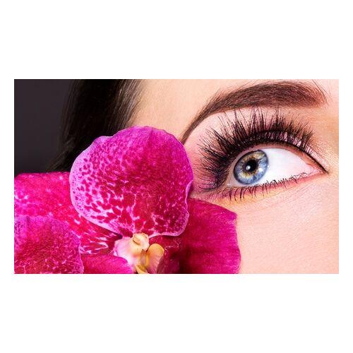 SWZ Kamen Wimpernverlängerung mit bis zu 80-100 Wimpern pro Auge im Studio SWZ Kamen ab 39,90 € (bis zu 78% sparen*)