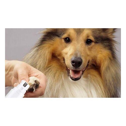 Groupon Goods Global GmbH 1x oder 2x elektrischer Nagel-Trimmer für Haustiere