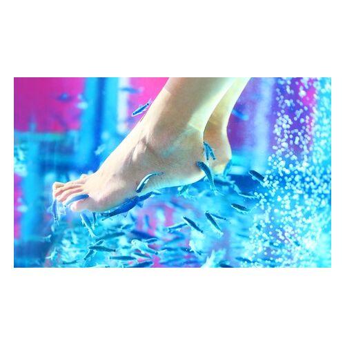 Aquarius Dr Fish Spa 30 Minuten Fisch-Spa für die Füße bei Aquarius Dr Fish Spa (bis zu 39% sparen*)