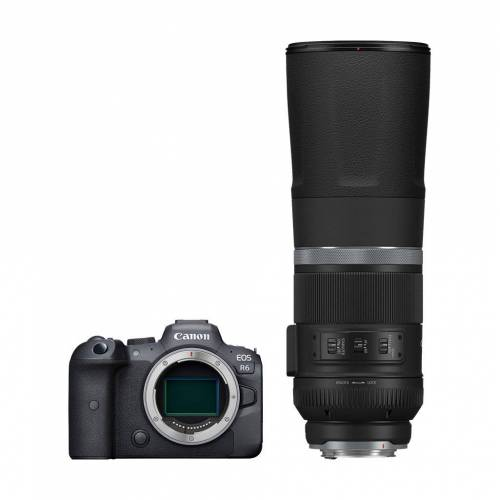 Canon EOS R6 + RF 800 mm f/11 IS STM Systemkamera