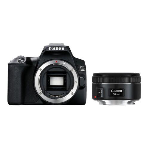 Canon EOS 250D + EF 50 mm f/1.8 STM Spiegelreflexkamera
