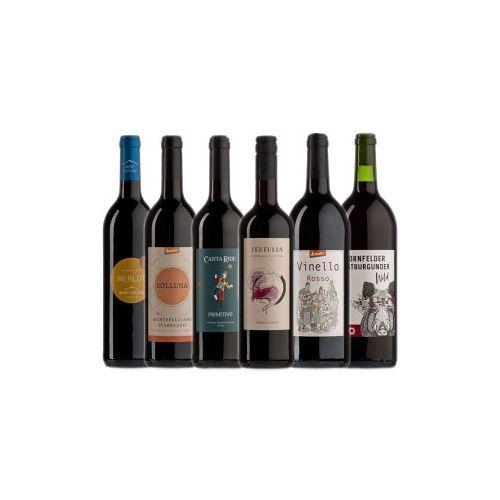 Bio-Weinkiste leichte Probierkiste Bio-Rotwein / 6 Flaschen