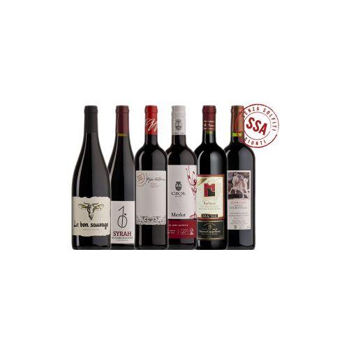 Bio-Weinkiste Bio Rotwein ungeschwefelt zum Probieren / 6 Flaschen Bio