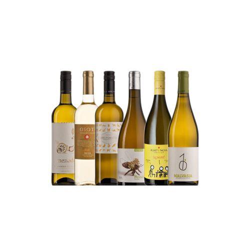 Bio-Weinkiste Bio- Weißweinkiste Spanien / 6 Flaschen