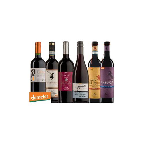 Bio-Weinkiste Demeter Probierkiste Rotwein / 6 Flaschen