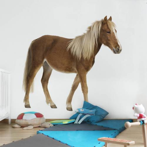 Kindertapete Pony