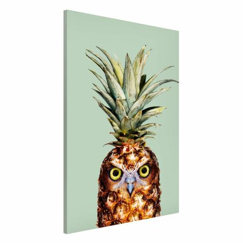 Ananas mit Eule