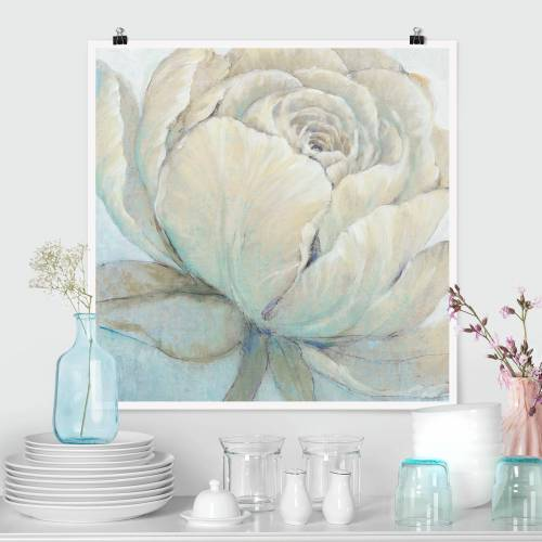 Poster Englische Rose Pastell