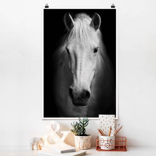 Poster Dream of a Horse