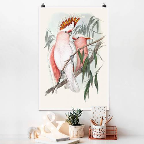 Poster Tiere Pastell Papageien I
