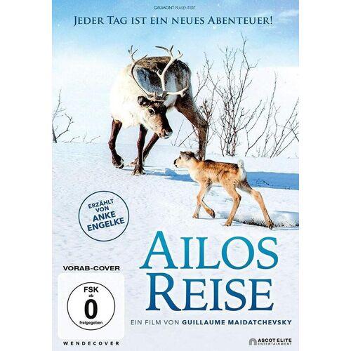 AL!VE AG Ailos Reise