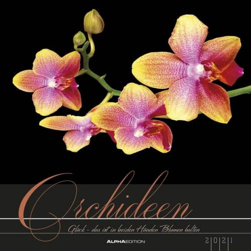 Alpha Orchideen 2021